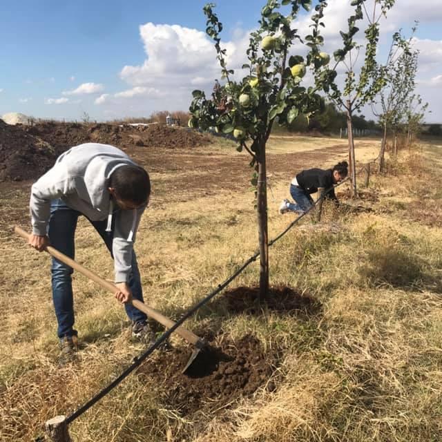 Как Катрин изостави кариерата си в ООН, за да сее и жъне българската земя